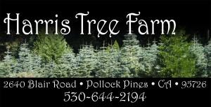 Harris Tree Farm - Pollock Pines - El Dorado County - California