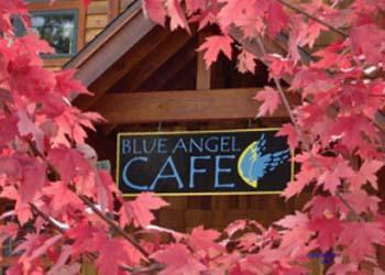 Blue Angel Framed